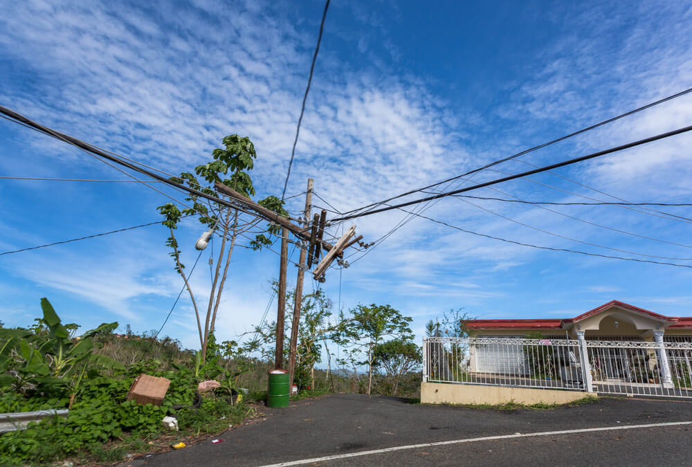 CEO of Puerto Rico's Bankrupt Power Company Abruptly Resigns