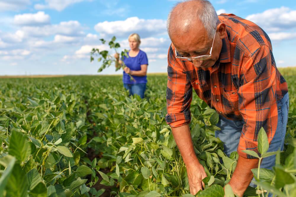 China Steps Up Propaganda Drive to Turn Farmers Against Trump, GOP
