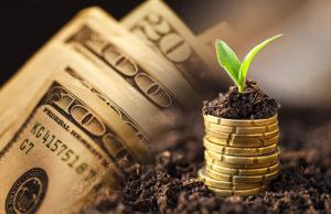 money market account-money
