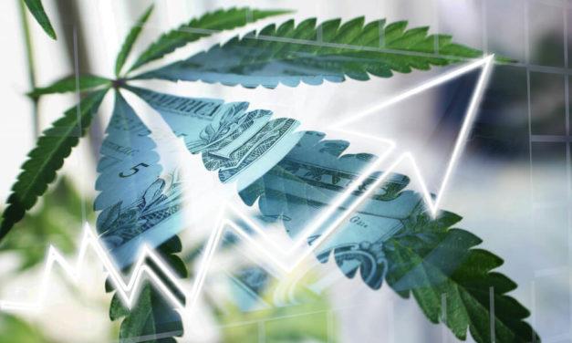 Cannabis Sales, Stocks Soar Amid Outbreak, but Will the Bump Last?