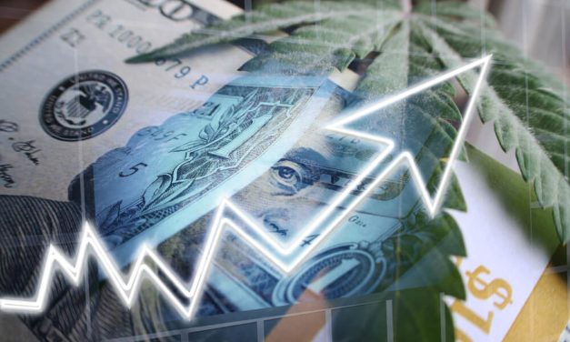 Marijuana Market Update: Don't Buy Aurora, Buy These Pot Stocks Instead