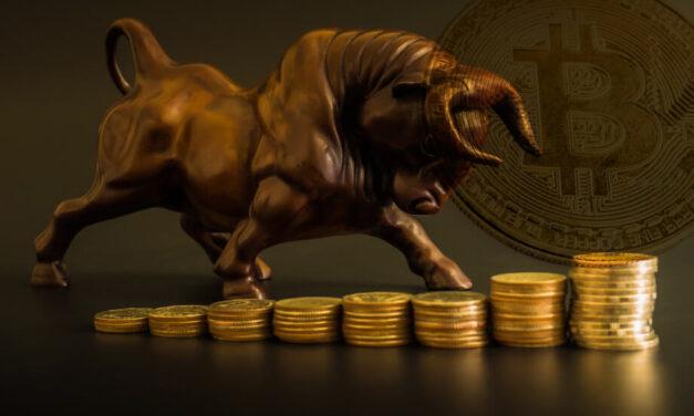 Bitcoin Blockchain: Not a Bull? You Will Be…