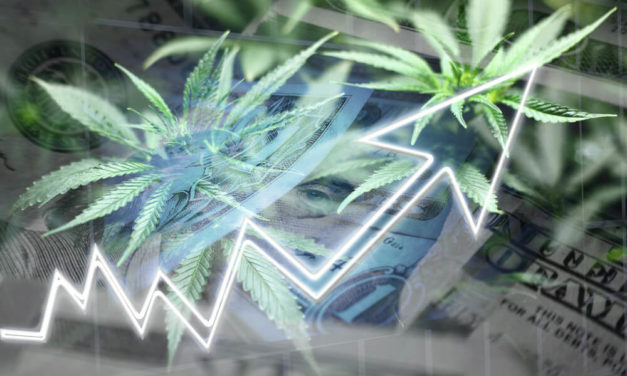 Michigan's Cannabis Market Boom; The Flowr Corp. Analysis