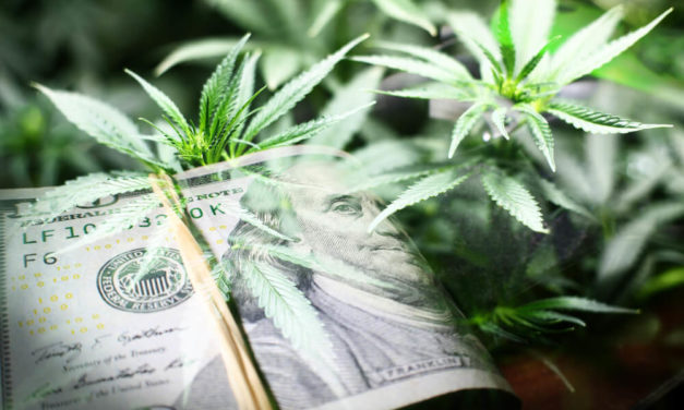 Marijuana Market Update: Why It's Time to Get Back Into Pot Stocks