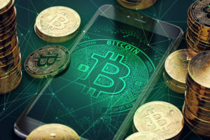 Bitcoin NVDA stock The Bull & The Bear