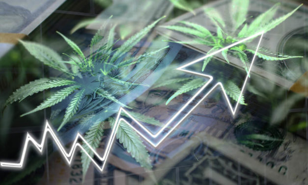 Brodrick: 3 Charts That Form a Treasure Map to Cannabis Profits