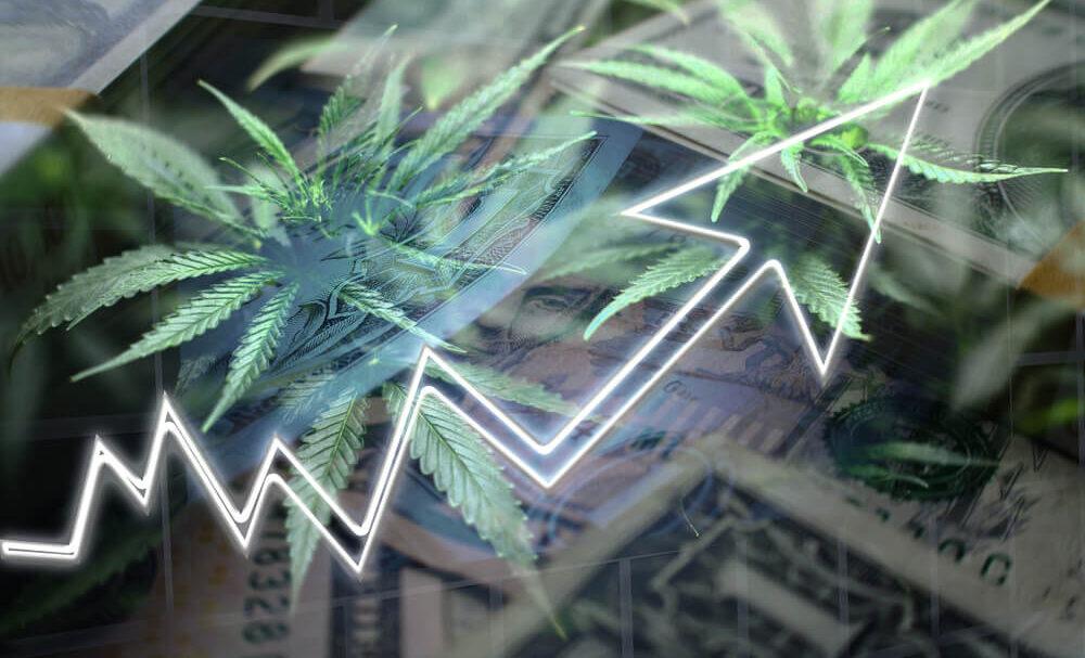 Marijuana Market Update: Canopy's Stock Stumbles — but Doesn't Fall