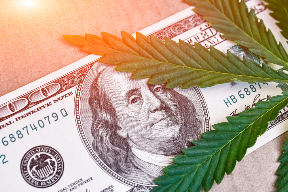 Big Cannabis Earnings Week and the Markets After Election