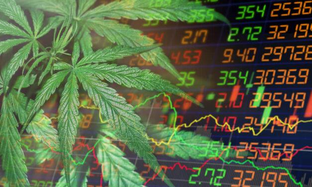 Marijuana Market Update: The Riskiness of Cannabis Stocks