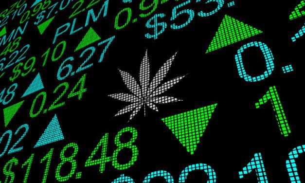 Marijuana Market Update: The Big 6 Pot Stocks