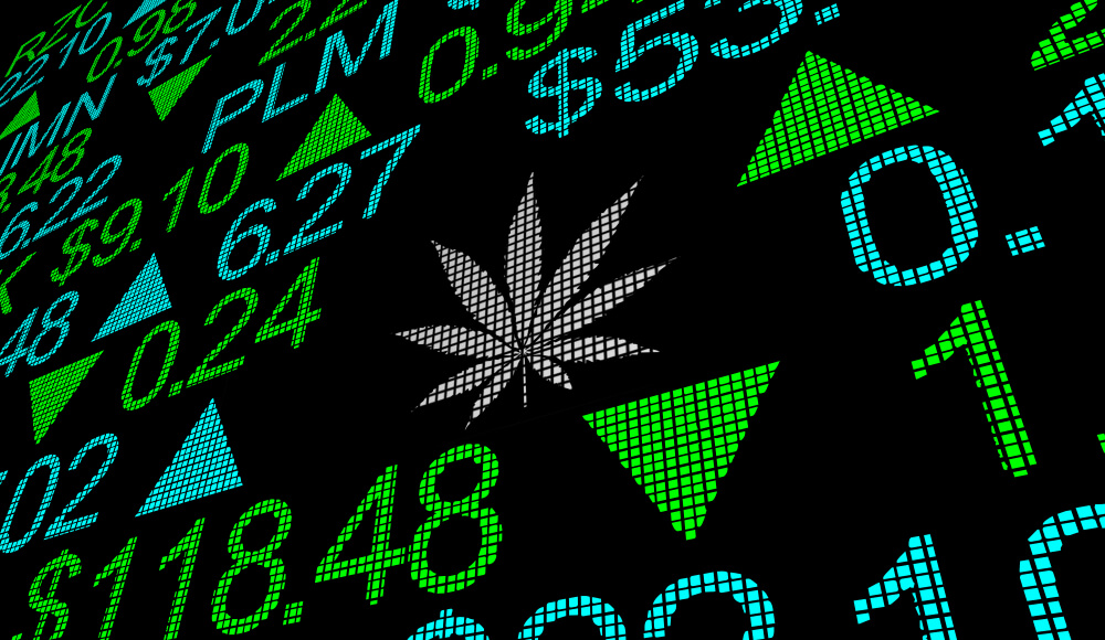 Marijuana Market Update: The Big 6 Pot Stocks