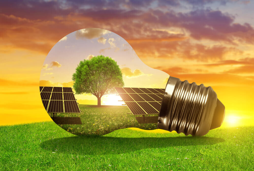 Canadian Solar (CSIQ) Is the Best Value Buy Now