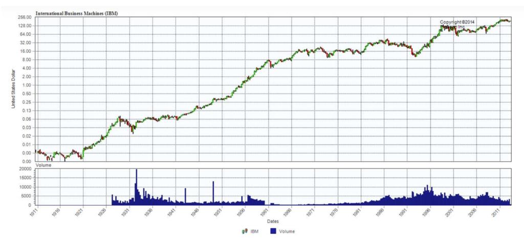 IBM Tesla stock