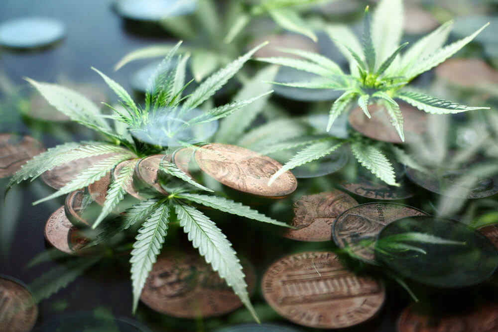 Red Flags Fly High for Smart Cannabis Corp. Stock
