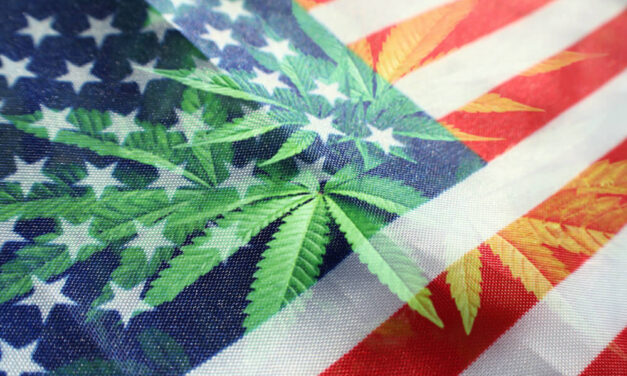 Cannabis Companies Need Florida Legalization … Here's Why