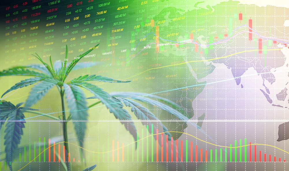 The Global Cannabis Trend + New Leaf Stock (NLVVF) Analysis